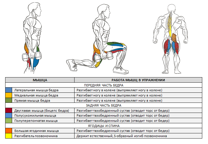Kojų pratimai arba kaip pakelti kojas