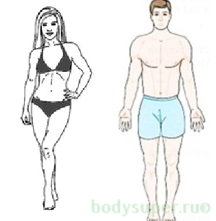 Прибор для определения процента жира в организме. Как измерить подкожный жир и идеальный процент жира